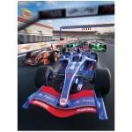 LL33626POS THE RACE