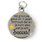 Charm for you Succes